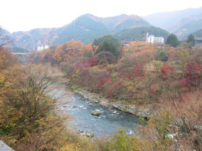 20141125kinugawa10